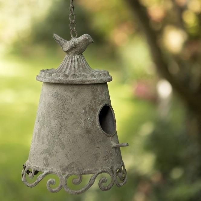 Bird Feeders & Baths