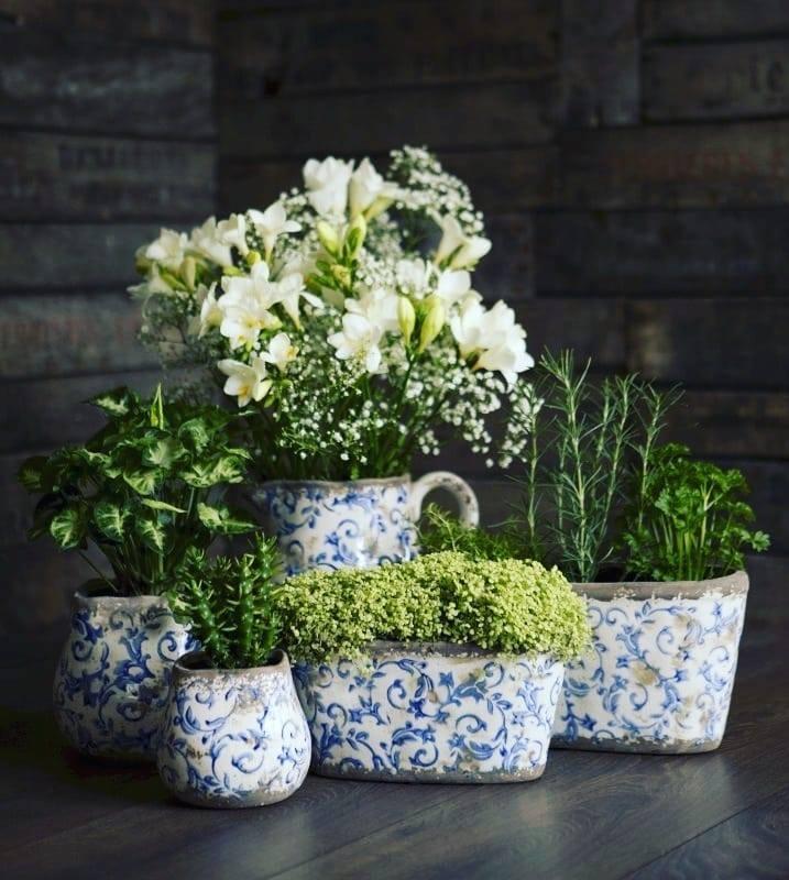 Indoor Pots and Planters
