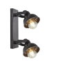 INDUSTVILLE SWIVEL DOUBLE SPOTLIGHT FLUSH MOUNT IMAGE 2